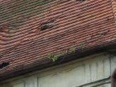 Dach kaplicy św. Barbary przed remontem (11)