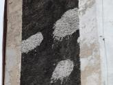 Remont elewacji kościoła parafialnego (25)