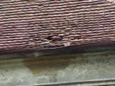 Dach kaplicy św. Barbary przed remontem (4)