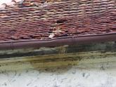 Dach kaplicy św. Barbary przed remontem (31)